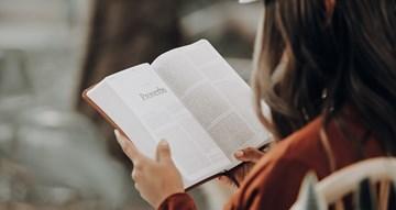 Quatro livros para ler agora