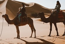 Viagens sem volta. As aventuras de duas famílias pelo mundo